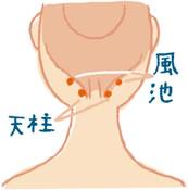 neck201205_image01-pc